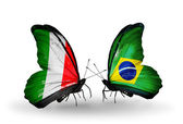 Two butterflies with flags on wings as symbol of relations Italy and Brazil — Stock Photo