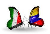 Twee vlinders met vlaggen op vleugels als symbool van betrekkingen italië en venezuela — Stockfoto