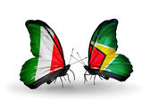 Two butterflies with flags on wings as symbol of relations Italy and Guyana — Stock Photo