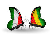Two butterflies with flags on wings as symbol of relations Italy and Guinea — Stockfoto