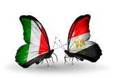 Två fjärilar med flaggor på vingarna som symbol för förbindelserna mellan italien och egypten — Stockfoto
