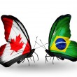 Two butterflies with flags on wings as symbol of relations Canada and Brazil — Stockfoto