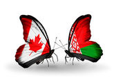Two butterflies with flags on wings as symbol of relations Canada and Belarus — Stock Photo