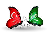 Two butterflies with flags on wings as symbol of relations Turkey and Saudi Arabia — Stock Photo