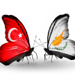 Two butterflies with flags on wings as symbol of relations Turkey and Cyprus — Stock Photo #36918393