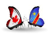 Zwei Schmetterlinge mit Flaggen am Flügel als Symbol für Beziehungen, Kanada und kongo — Stockfoto