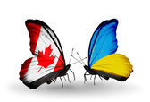 Two butterflies with flags on wings as symbol of relations Canada and Ukraine — Stock Photo