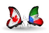 Två fjärilar med flaggor på vingarna som symbol för förbindelserna mellan kanada och ekvatorialguinea — Stockfoto