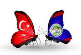 Two butterflies with flags on wings as symbol of relations Turkey and Belize — Stock Photo