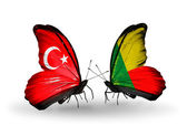 Dwa motyle z flagami na skrzydłach jako symbol Turcja stosunków i Beninu — Zdjęcie stockowe
