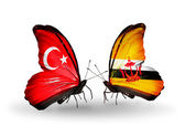 Two butterflies with flags on wings as symbol of relations Turkey and Brunei — Stock Photo