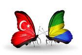 Iki kelebek kanatları ilişkiler türkiye ve gabon sembolü olarak bayrakları ile — Stok fotoğraf