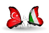 Two butterflies with flags on wings as symbol of relations Turkey and Italy — Stock Photo