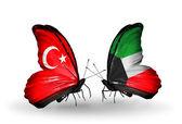 Due farfalle con bandiere sulle ali come simbolo di relazioni turchia, kuwait — Foto Stock