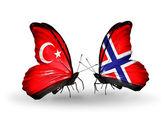 Dva motýli s příznaky na křídlech jako symbol vztahy turecka a norska — Stock fotografie