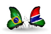 Two butterflies with flags on wings as symbol of relations Brazil and Gambia — Stock Photo