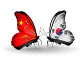 Due farfalle con bandiere sulle ali come simbolo delle relazioni Cina e Corea del sud — Foto Stock