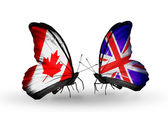 Two butterflies with flags on wings as symbol of relations Canada and UK — Stock Photo
