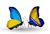 Two butterflies with flags on wings as symbol of relations Ukraine and Bosnia and Herzegovina — Stock Photo