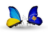 Two butterflies with flags on wings as symbol of relations Ukraine and Kosovo — Stock Photo