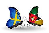 两只蝴蝶翅膀上的标志与作为象征关系瑞典和莫桑比克 — 图库照片