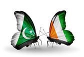 Two butterflies with flags of Pakistan and Cote Divoire on wings — Foto Stock