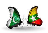 2 匹の蝶翼にパキスタンとミャンマーの旗 — ストック写真