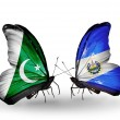 Stock Photo: Two butterflies with flags of Pakistand Salvador on wings