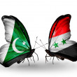 Stock Photo: Two butterflies with flags of Pakistand Syrion wings