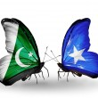 Stock Photo: Two butterflies with flags of Pakistand Somalion wings