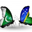 Stock Photo: Two butterflies with flags of Pakistand Solomon Islands on wings