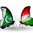 Stock Photo: Two butterflies with flags of Pakistand Tajikiston wings