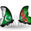 Stock Photo: Two butterflies with flags of Pakistand Turkmeniston wings