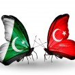 Stock Photo: Two butterflies with flags of Pakistand Turkey on wings