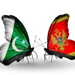 Stock Photo: Two butterflies with flags of Pakistand Montenegro on wings