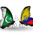 Stock Photo: Two butterflies with flags of Pakistand Ecuador on wings