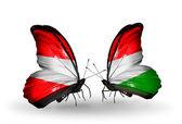 Två fjärilar med flaggor av österrike-ungern på vingar — Stockfoto