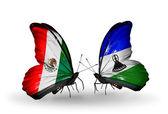 Iki kelebek kanatları üzerinde meksika ve lesoto bayrağı ile — Stok fotoğraf