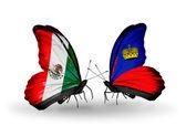 Dva motýli s vlajkami Mexika a Lichtenštejnska na křídlech — Stock fotografie