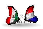 Zwei schmetterlinge mit fahnen von mexiko und den niederlanden auf flügeln — Stockfoto