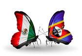 Dos mariposas con banderas de méxico y swazilandia en alas — Foto de Stock