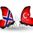 Zdjęcie stockowe: Butterflies with Norway and Turkey flags on wings