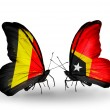 Zdjęcie stockowe: Butterflies with Belgium and East Timor flags on wings