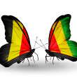Foto de Stock  : Butterflies with Belgium and Guineflags on wings
