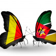 Zdjęcie stockowe: Butterflies with Belgium and Mozambique flags on wings