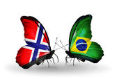 Butterflies with Norway and Brazil flags — Stock Photo