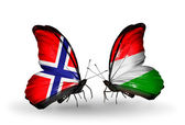 Butterflies with Norway and Hungary flags — Stock Photo