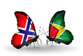 Butterflies with Norway and Guyana flags on wings — Stock Photo