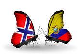 Borboletas com bandeiras de noruega e equador sobre asas — Fotografia Stock