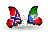 Butterflies with Norway and Equatorial Guinea flags on wings — Stock Photo